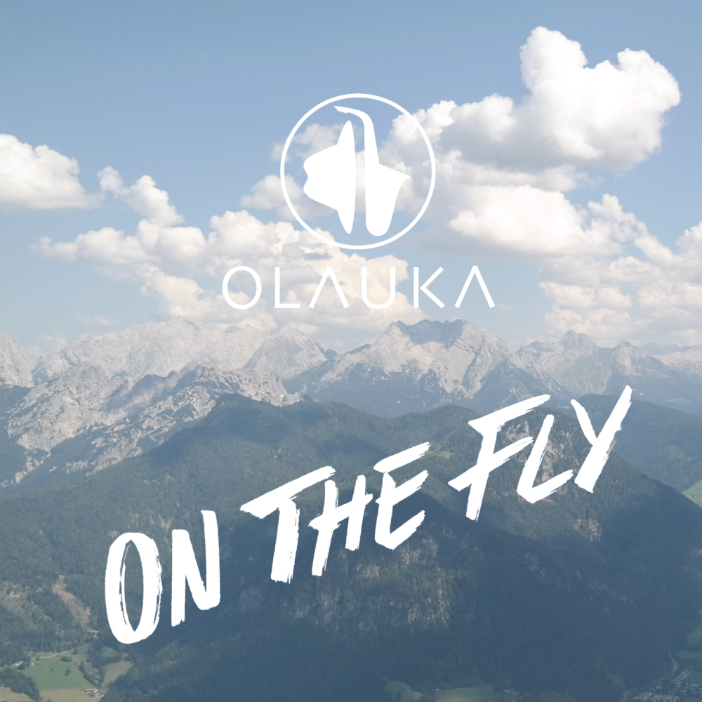 Single Release: On The Fly